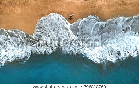 lone surfer on waves Stock photo © morrbyte