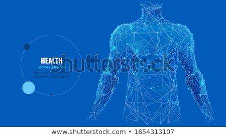 здорового человека графических чаевые хорошие здоровья Сток-фото © Tefi