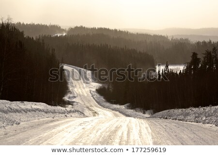 Northern Saskatchewan logging road in winter Stock photo © pictureguy