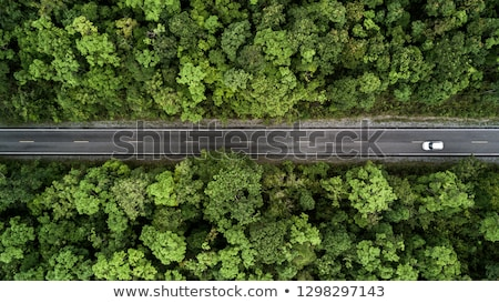 Aerial view of lonely car on the road Stock photo © stevanovicigor