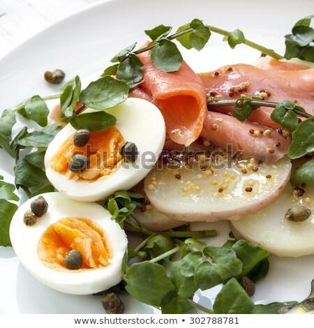 Food - watercress and salmon salad Stock photo © IS2