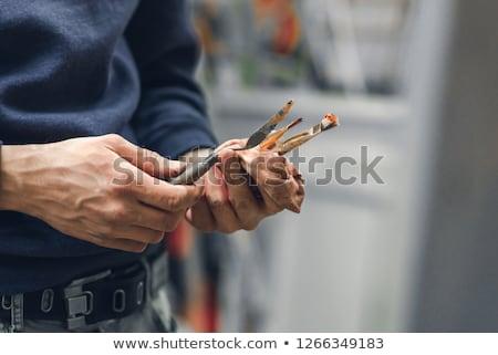 художник палитра щетка Живопись студию искусства Сток-фото © dolgachov