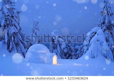 夢のような 山 家 雪 冬 ストックフォト © Kotenko