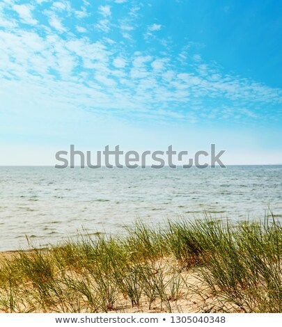 Closeup of sandy dunes on Lake Superior Stock photo © Sandralise