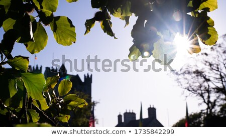 Claregalway Castle, Ireland Stock photo © borisb17