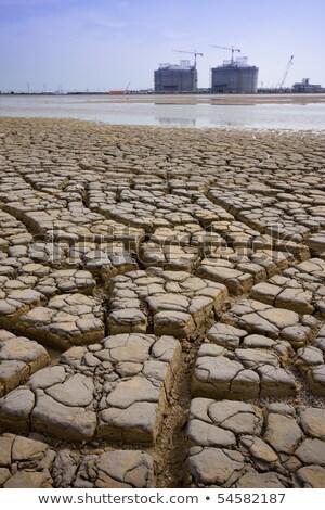 Secar Tailândia sol fundo deserto viajar Foto stock © jomphong