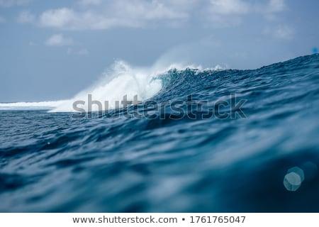 海 サーファー 日没 ビーチ 水 太陽 ストックフォト © diomedes66
