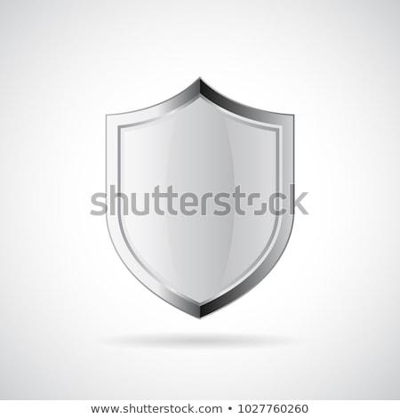 bleu · argent · bouclier · sécurité · ordinateurs · web - photo stock © fenton