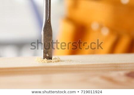 Forage bit bois ennuyeux trou Photo stock © rogerashford