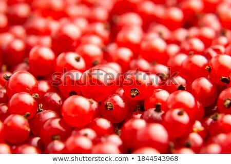 Taze lezzetli kırmızı frenk üzümü karpuzu makro Stok fotoğraf © juniart