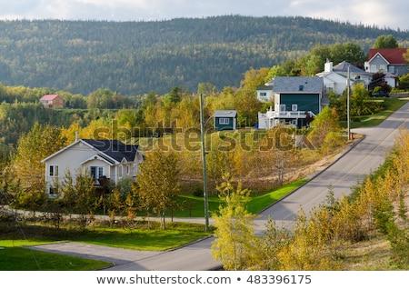 görmek · Quebec · Kanada · ağaç · bahar · çim - stok fotoğraf © aladin66