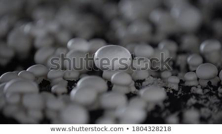 Grzyby gospodarstwa zakażony worek rozwój warzyw Zdjęcia stock © stoonn
