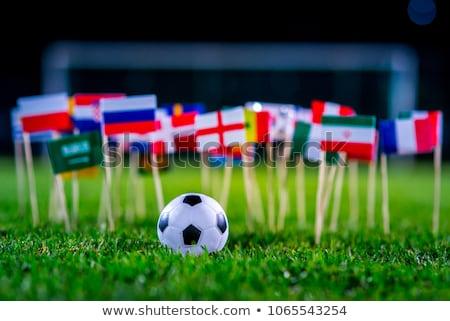 Campeonato mundo Brasil 2014 bandeira Foto stock © mayboro