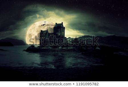 Old Castle in the sea at night sky moon background Stock photo © ankarb