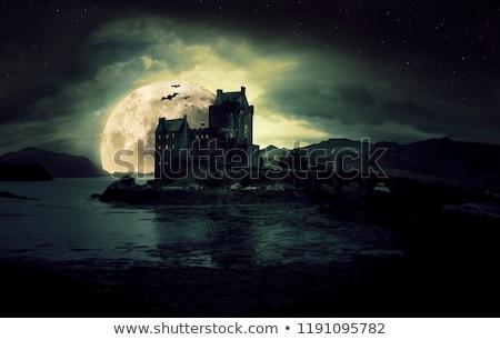 castillo · noche · hermosa · luna · llena · antigua - foto stock © ankarb