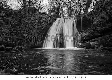Cachoeira yorkshire idílico cachoeiras água madeira Foto stock © chris2766