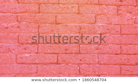 wall of red old bricks in a temple area stock photo © meinzahn