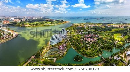 Singapore development Stock photo © joyr