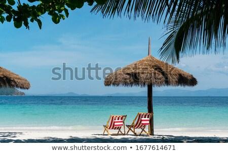 Vacances d'été vecteur design lieu texte plage Photo stock © odina222