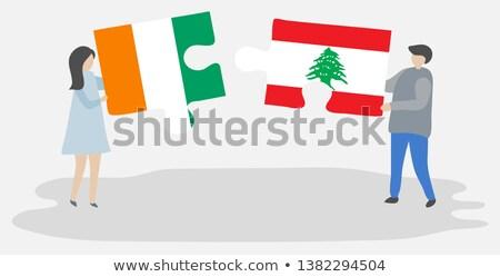 Берег Слоновой Кости флаг головоломки изолированный белый бизнеса Сток-фото © Istanbul2009