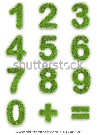 Digits 1, 2, 3, 4 of Green Lawn. Stock photo © tashatuvango