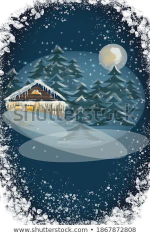 Yalnız ağaç kış gece ay kar Stok fotoğraf © Tatik22