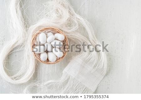 Silkworm Stock photo © jeayesy