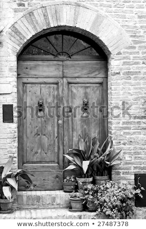 Wooden door in Tuscany, Italy in black and white Stock photo © tang90246