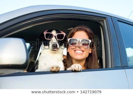 ストックフォト: 女性 · 犬 · 車 · 夏 · 旅行 · 休暇