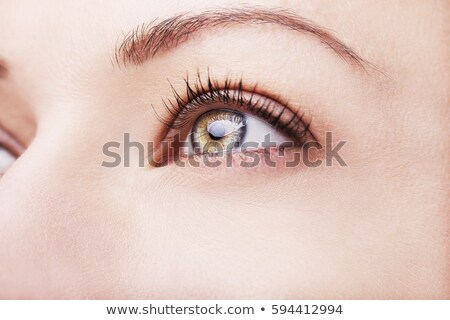 Brown eye of a young woman looking up. Focus on iris Stock photo © photocreo