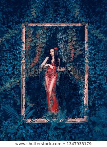 Frame wijnstok planten jong meisje illustratie witte Stockfoto © bluering