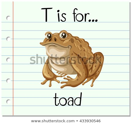 Flashcard alphabet T is for toad Stock photo © bluering