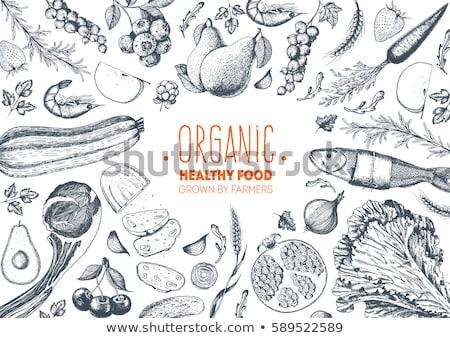 Comida ilustrações fruto compras frango Foto stock © Tefi