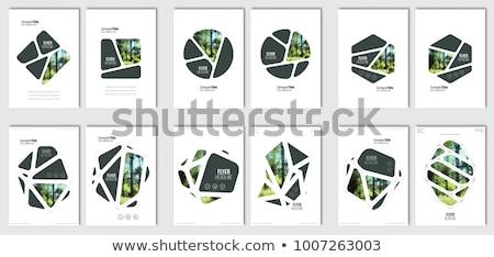 Meetkundig vector brochure ontwerp zwart wit ontwerpsjabloon Stockfoto © blumer1979