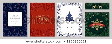 Christmas pine tree wreath and gold ornament card Stock photo © cienpies