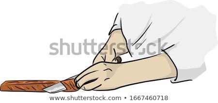 mes · geïsoleerd · witte · vector · cartoon - stockfoto © Lady-Luck