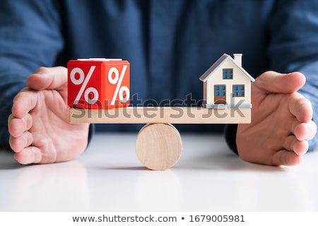 Balancing percentage Rood huis model wip Stockfoto © AndreyPopov