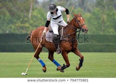 Players playing polo on green field Stock photo © jossdiim