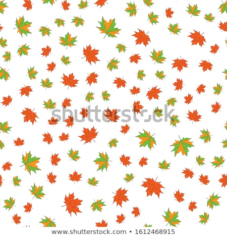Naadloos kleur vector patroon oranje Stockfoto © barsrsind