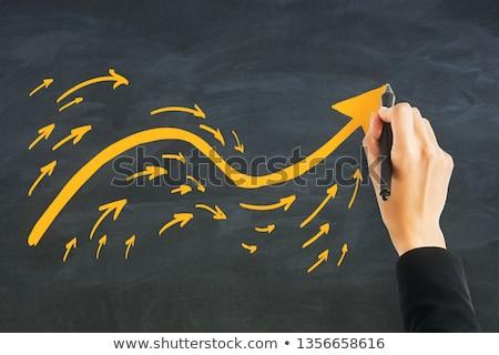 Stock foto: Purpose Following Arrow Concept On Blackboard