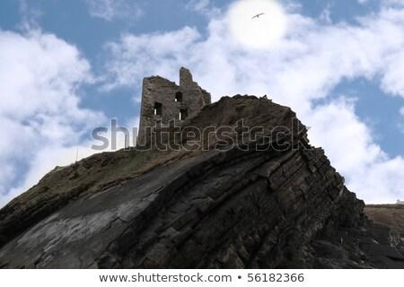 ballybunion castle on the cliff Stock photo © morrbyte