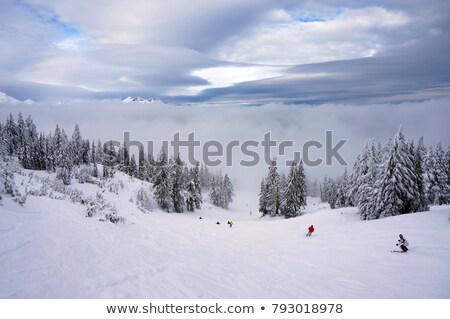 Kawaler niebo jezioro obraz w górę piękna Zdjęcia stock © jkraft5