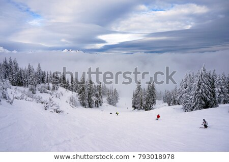 mount bachelor and sky stock photo © jkraft5