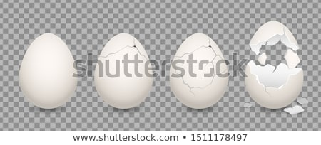 isolated cracking egg on white Stock photo © vichie81