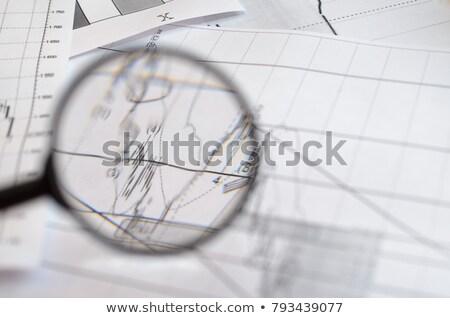 Informacji wymiany lupą starego papieru czerwony pionowy Zdjęcia stock © tashatuvango