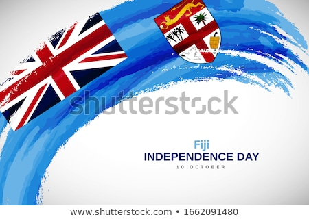 Bandiera Fiji verniciato pennello solido abstract Foto d'archivio © tang90246