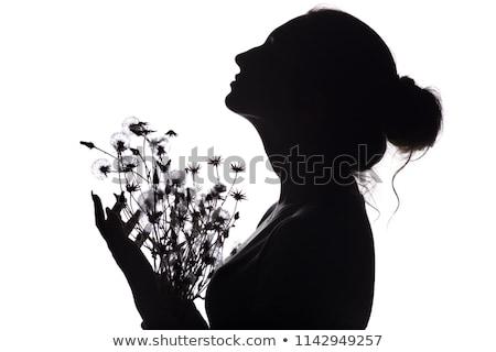 Mooie jonge vrouw drogen bloemen hoofd heldere Stockfoto © svetography