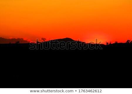 Mt Ventoux Stock photo © guffoto