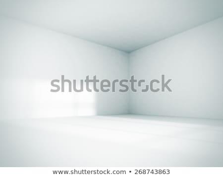 white empty room Stock photo © ssuaphoto