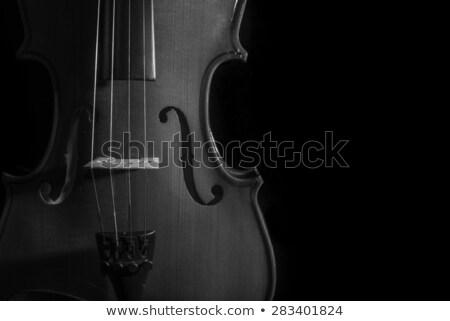 черный · скрипки · белый · музыку - Сток-фото © gregorydean